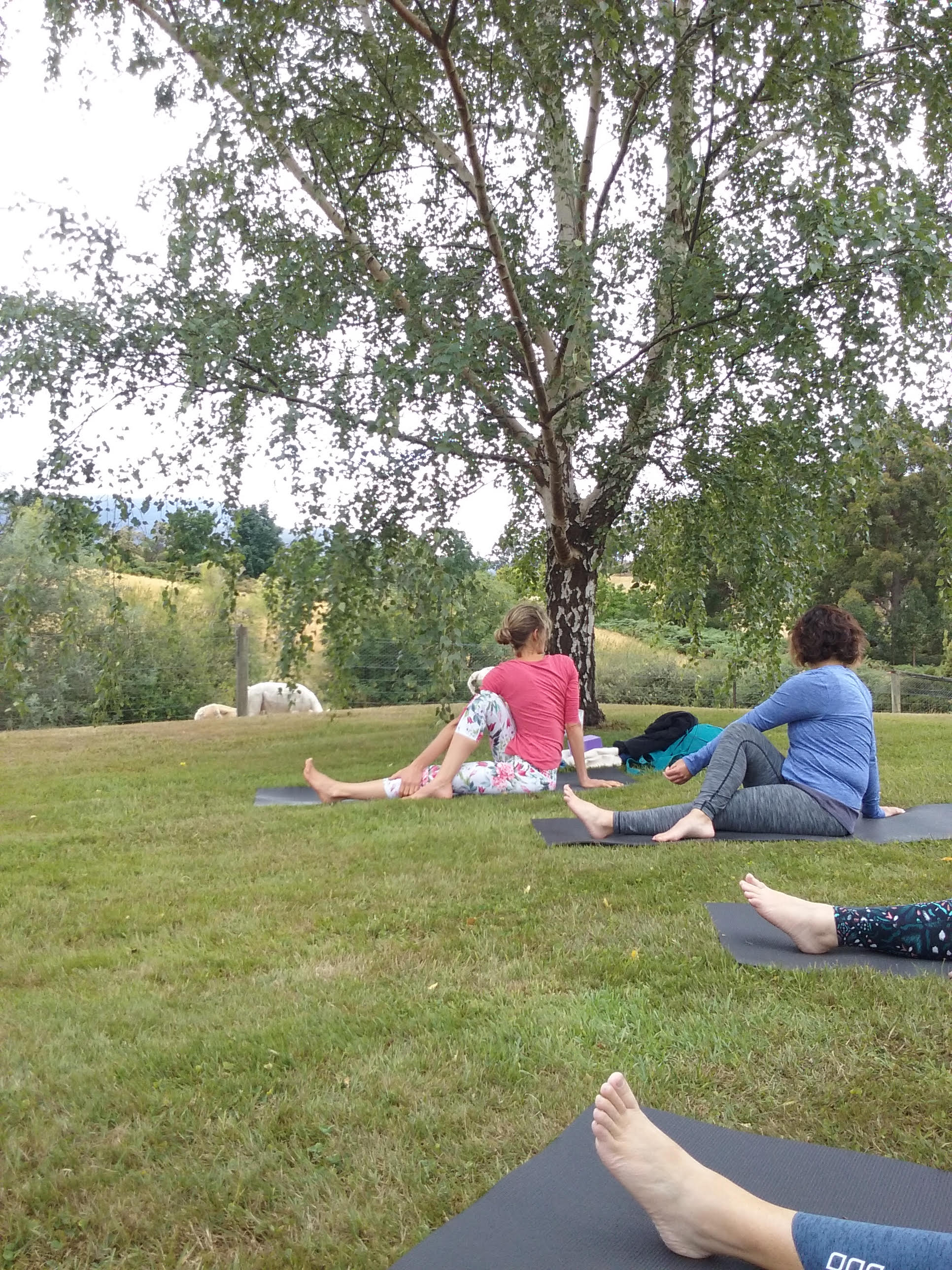 garden yoga 2