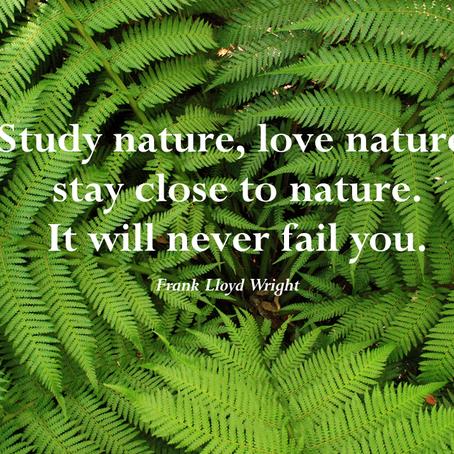 Nature as Yoga