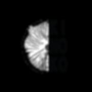 kinoko logo png.png