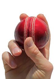 Cricket Ball .jpeg