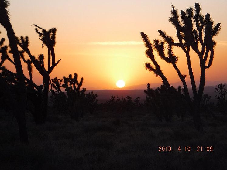 desert yes.jpg