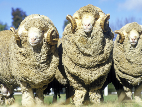 What are RAMS (Risk Assessment Method Statements) and how do they help?