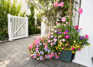 The Exclamation Point to Landscape Design