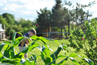 A Community Garden at Lake Manahawkin