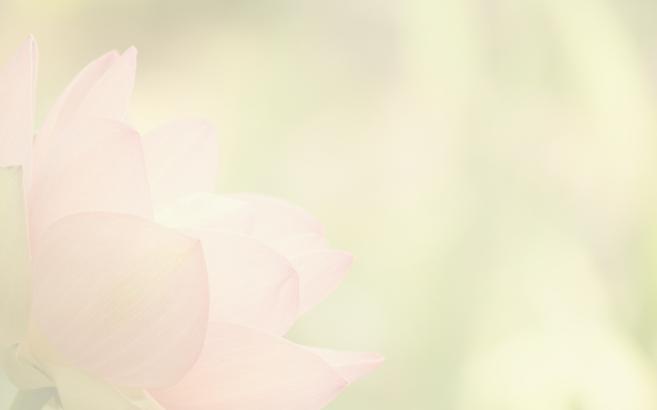 lotus blend.png