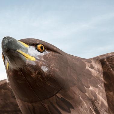 Planeprint Eagle