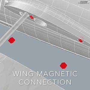 wingmag.jpg