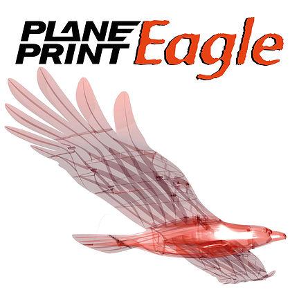 shoppic-eagle.jpg