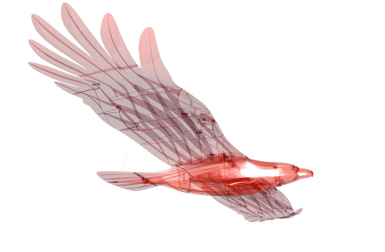 Planeprint-eagle-render2.jpg