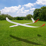 Planeprint Rise1-glider.jpg