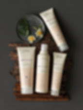 Aveda haircare products available from Shear Success