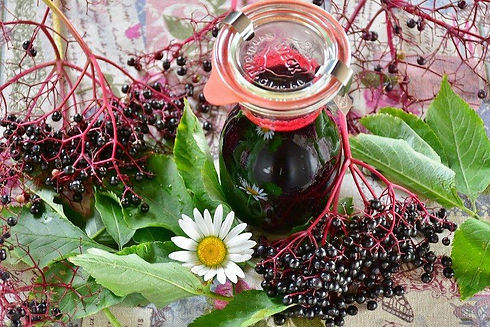 elderberry-extract_1000x.jpg