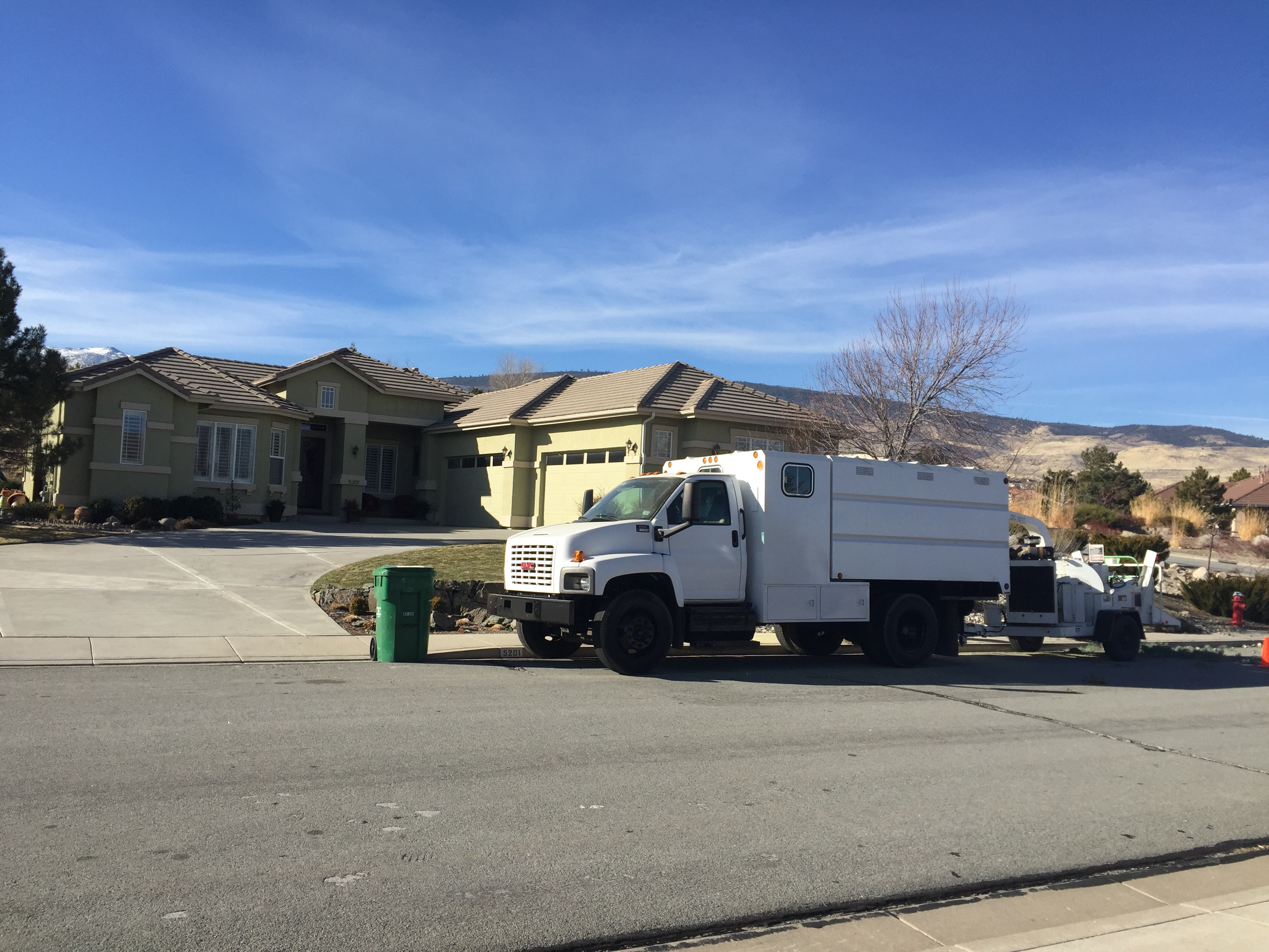 Reno Sparks tree care service