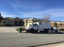 Reno Sparks tree care service