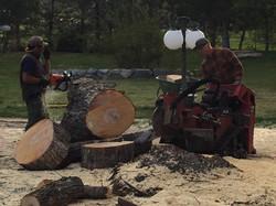 Reno Tree Stump Removal