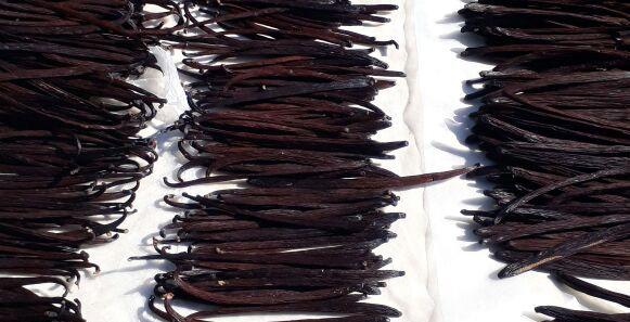 Vanilla Gourmet Mexicana/Mexican Gourmet Vanilla Bean-Grams -