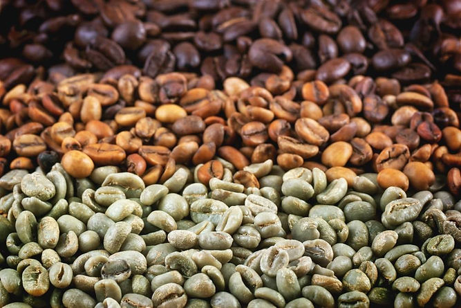 Coffee Beans-Green to Roasted.jpg