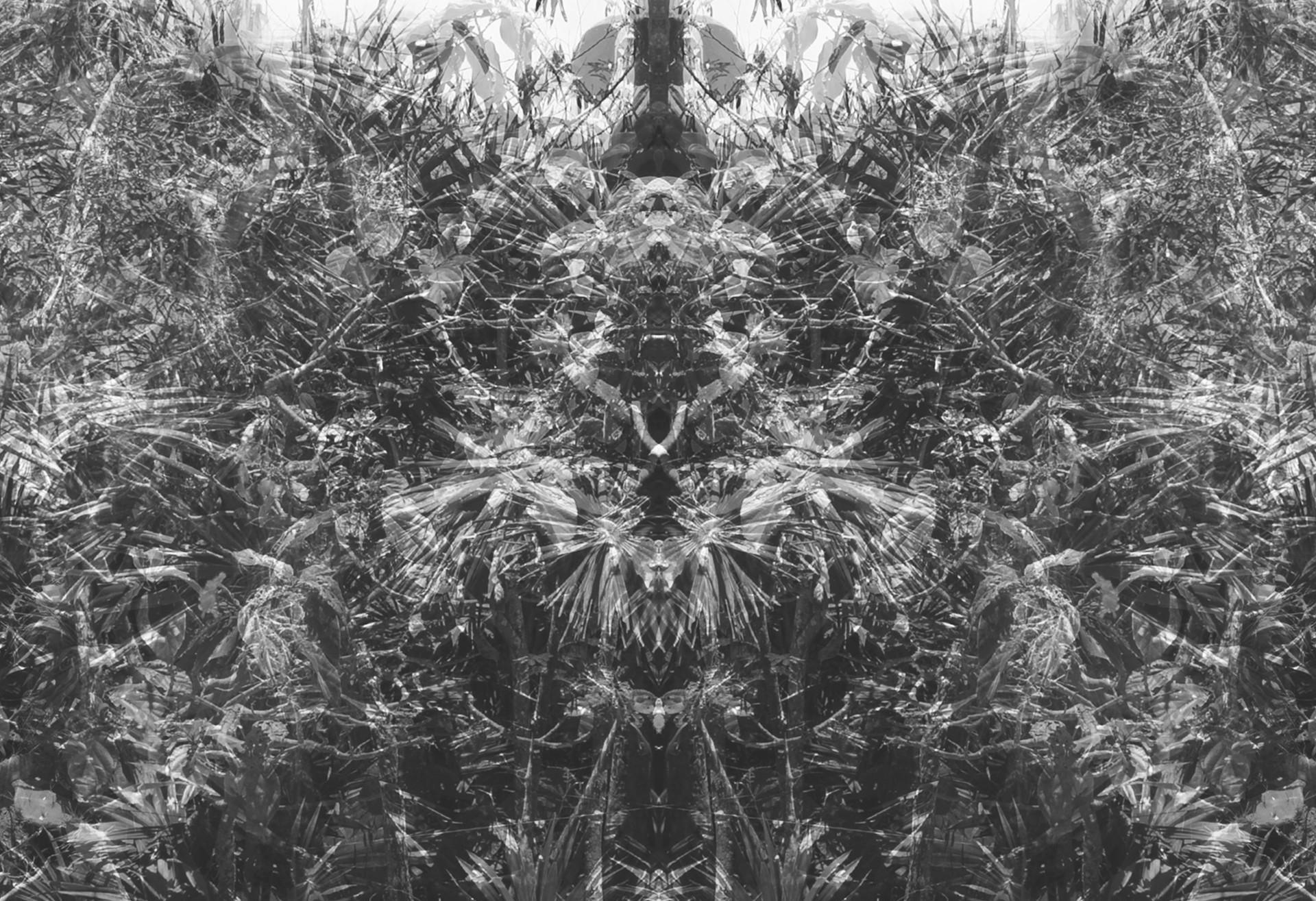 Rorschach | © Christian Baumgarten