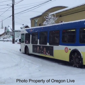 Snowpocalypse 2021 Emergency Preparedness