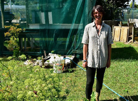 Reclaim your food sovereignty – grow your own!