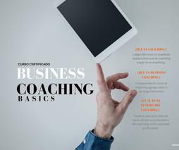Business Coaching Basics