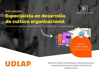 Diplomado Cultura Organizacional 2020 (1