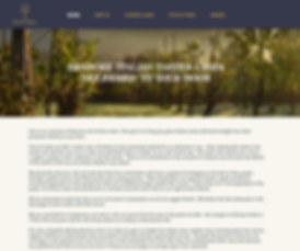 toviro-website-design-frome.2.png