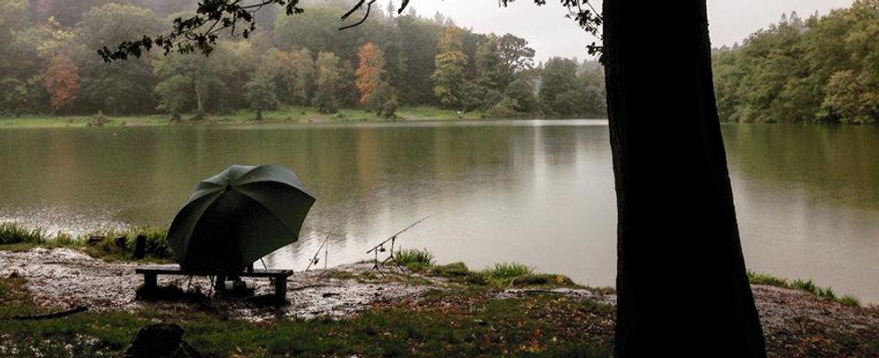 3.Walk-Around-Shearwater-Lake-Frome-Somerset-UK.jpg