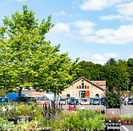 cheese-and-grain-viewed-across-marketplace-car-park.jpg