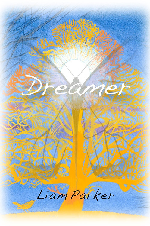 Dreamer - Poetry by Liam Parker