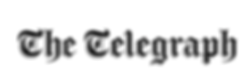 The-Telegraph-Nessy-Dress-Press.png