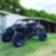 ATV WHIP