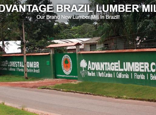 Empresa líder em importações de madeira de lei nos EUA compra uma das maiores madeireiras do Brasil.