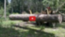 video youtube2.jpg