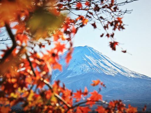 新的一年,就從充滿大和精神的富士山走入日本文化