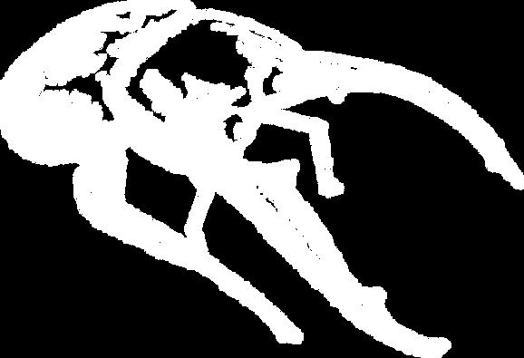 鍬型蟲.png