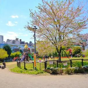 富久櫻花公園