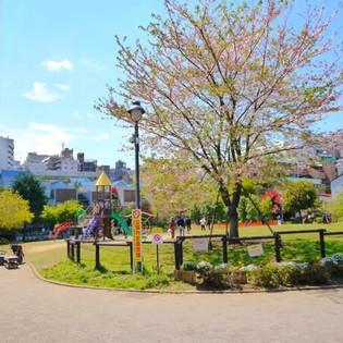 富久櫻花公園.jpeg