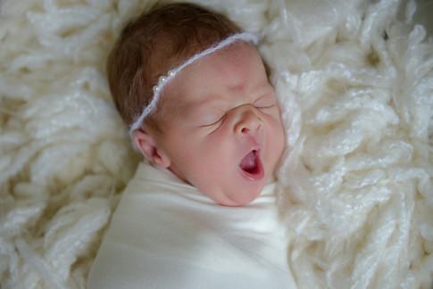 Newborns-13.jpg