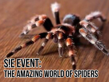 [S!E Event #7] - The Amazing World of Spiders