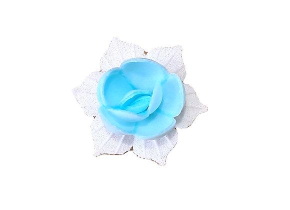 Narcise zila ar baltām lapiņām