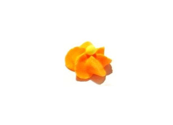 Olbaltuma ziediņi Oranži