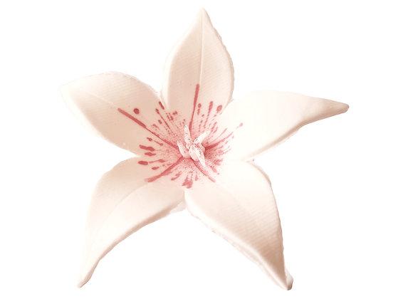 Lielas rozā lilijas