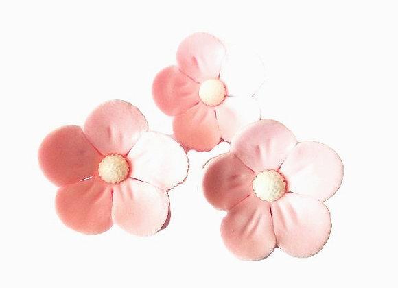 Gaiši rozā ābeļziedi