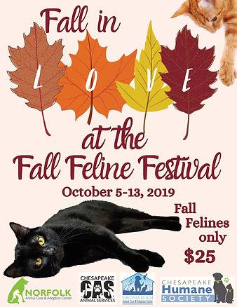 4th Annual Fall Feline Festival (4).jpg