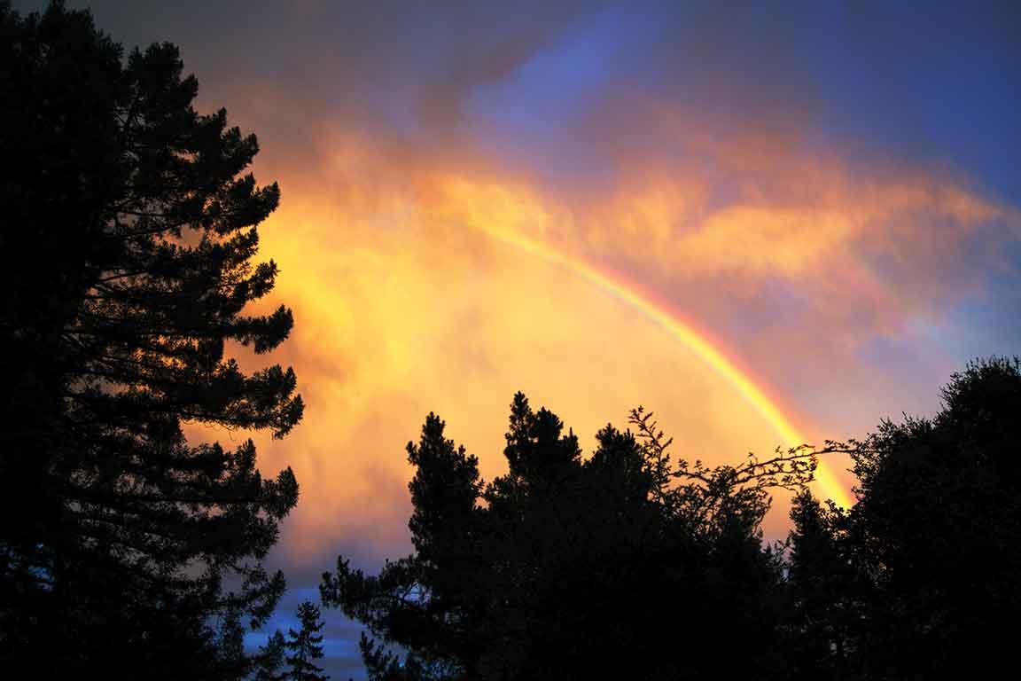 rainbow-rm1911-2