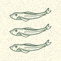 fish supper icons-12.png