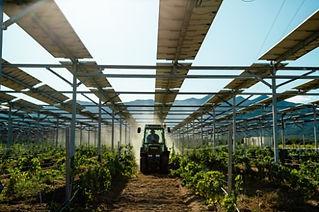 headerimageDynamicAgrivoltaicSystem-2.jp