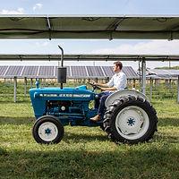 jacks-solar-garden-inspire_50428510867_o