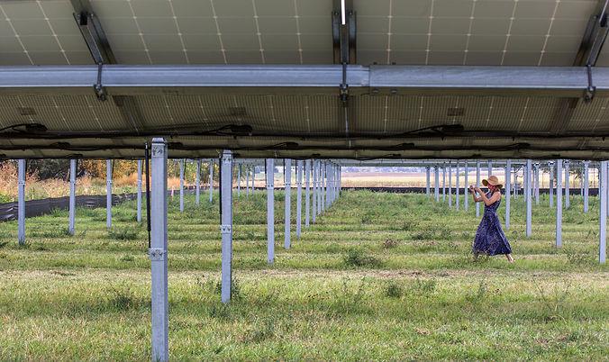 jacks-solar-garden-inspire_50428508892_o